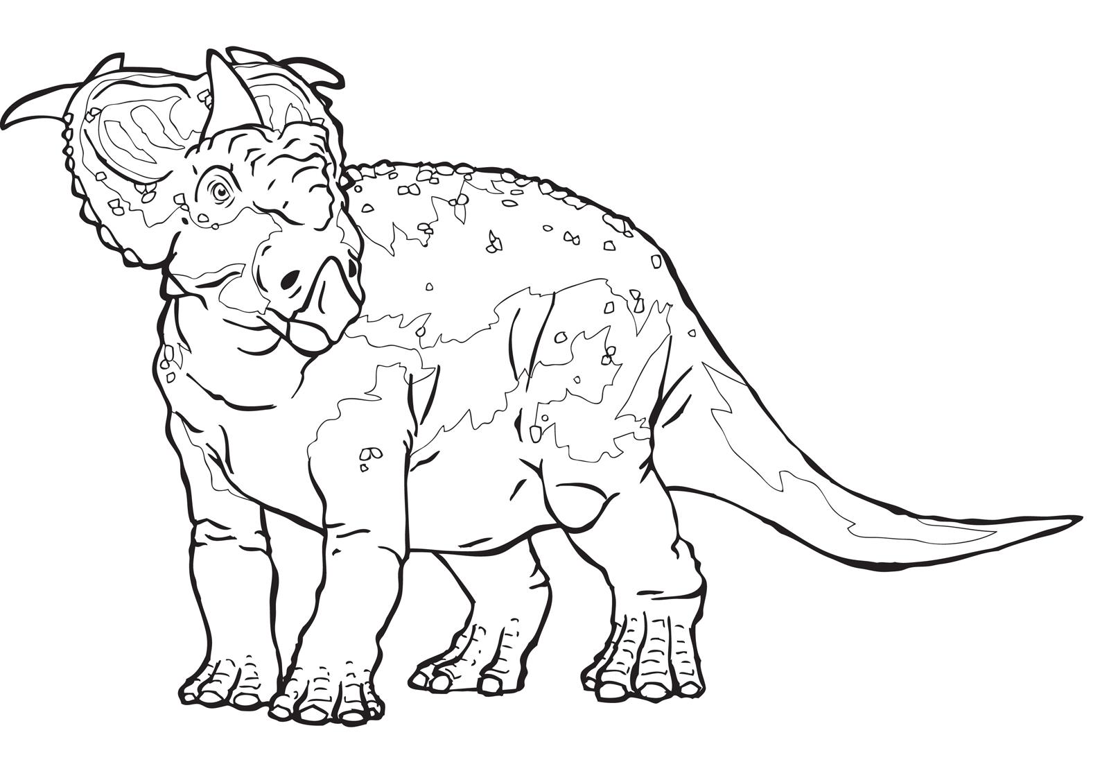 A spasso con i dinosauri ginepro il pachirinosauro amica for Disegni da colorare dinosauri