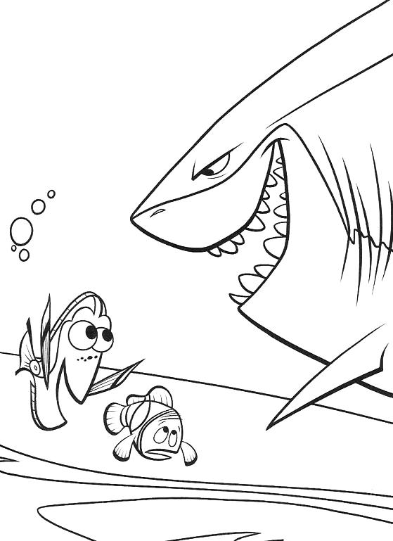 Alla Ricerca Di Nemo Bruto Parla Con Marlin E Dory