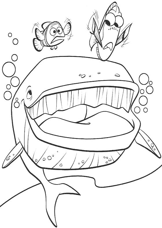 Alla ricerca di nemo marlin e dory parlano con la balena - Balene pagine da colorare ...