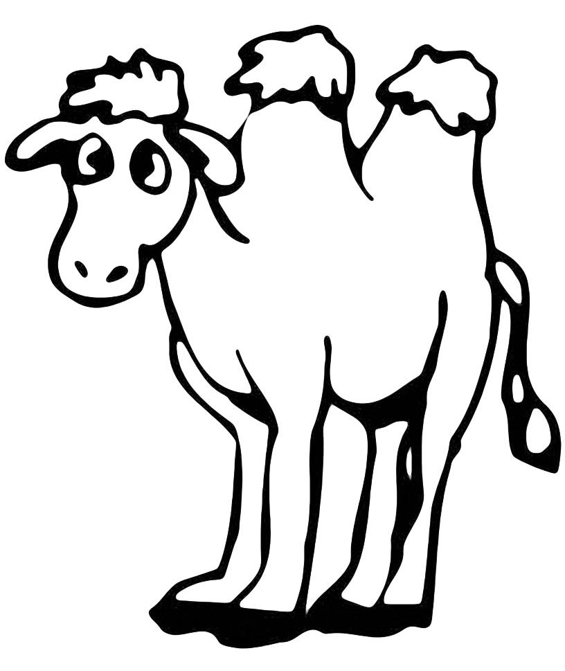Animali cammello for Cavallo da disegnare per bambini