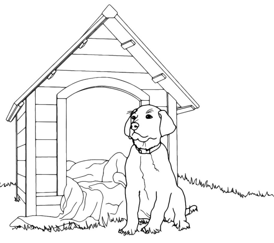 Animali cane davanti alla cuccia for Cane disegno da colorare
