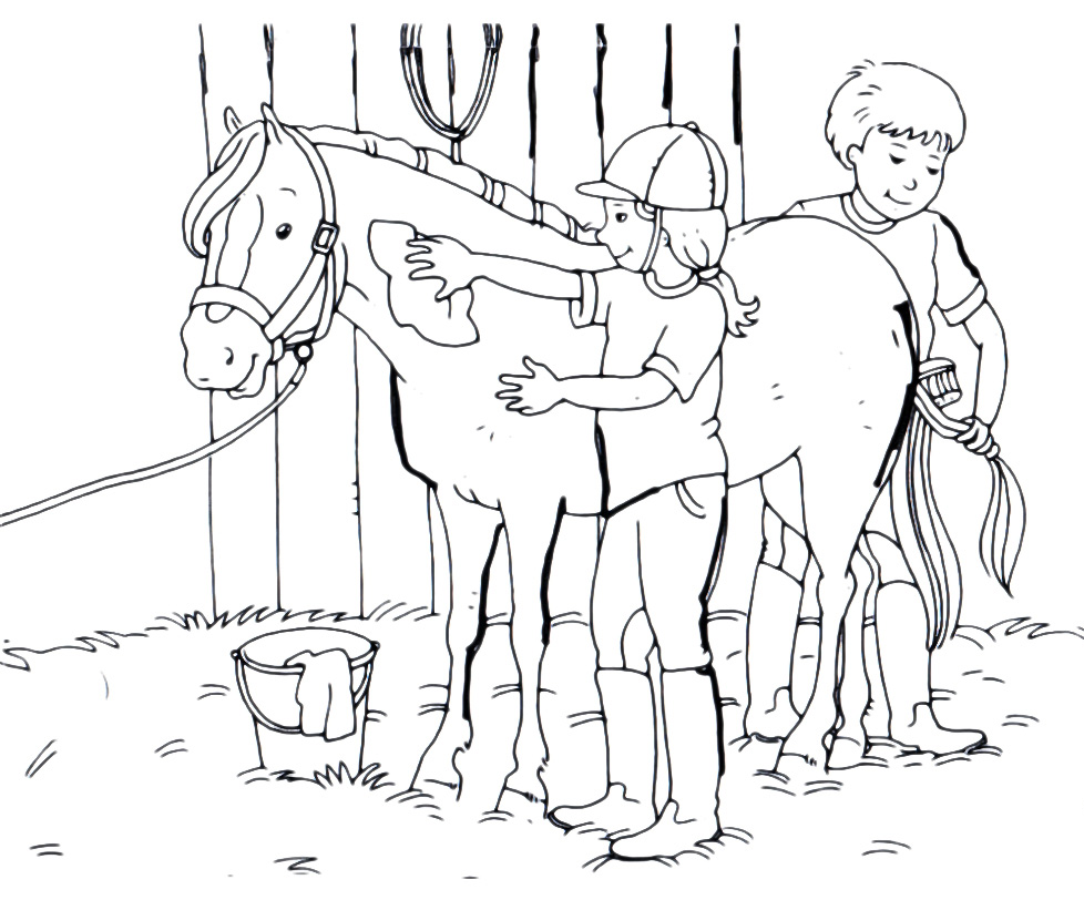 Animali cavallo accudito for Disegni da colorare dei cavalli
