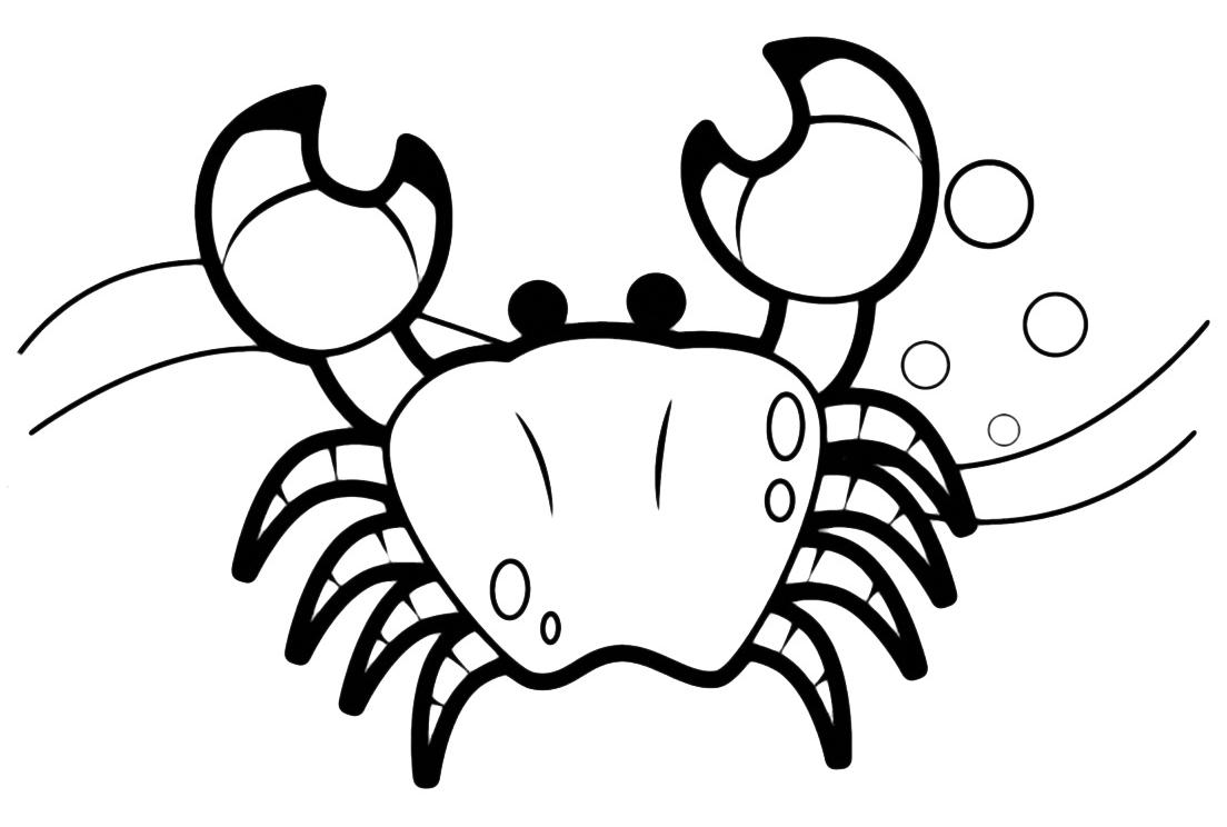Animali granchio for Immagini di pesci da stampare