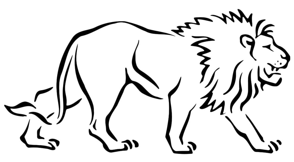 Image Of 2018 >> Animali - Leone