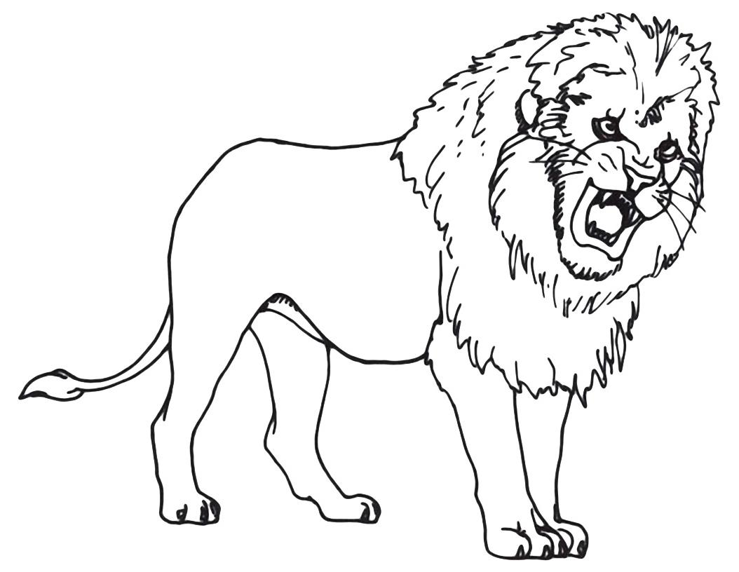 Animali leone che ruggisce for Immagini di animali marini da stampare