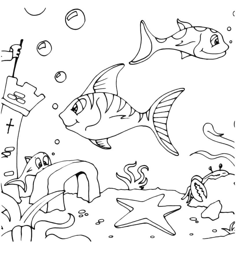Animali pesci sul fondale for Immagini di mare da colorare