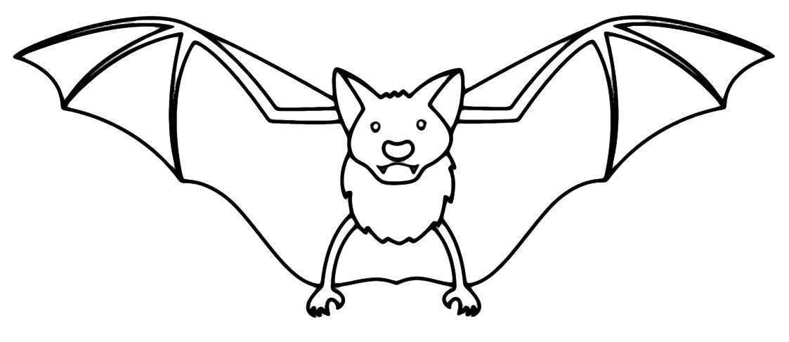 Animali pipistrello - Immagini pipistrello da stampare ...