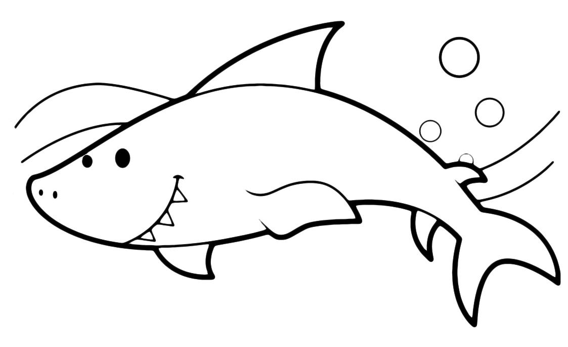Animali squalo for Disegno squalo