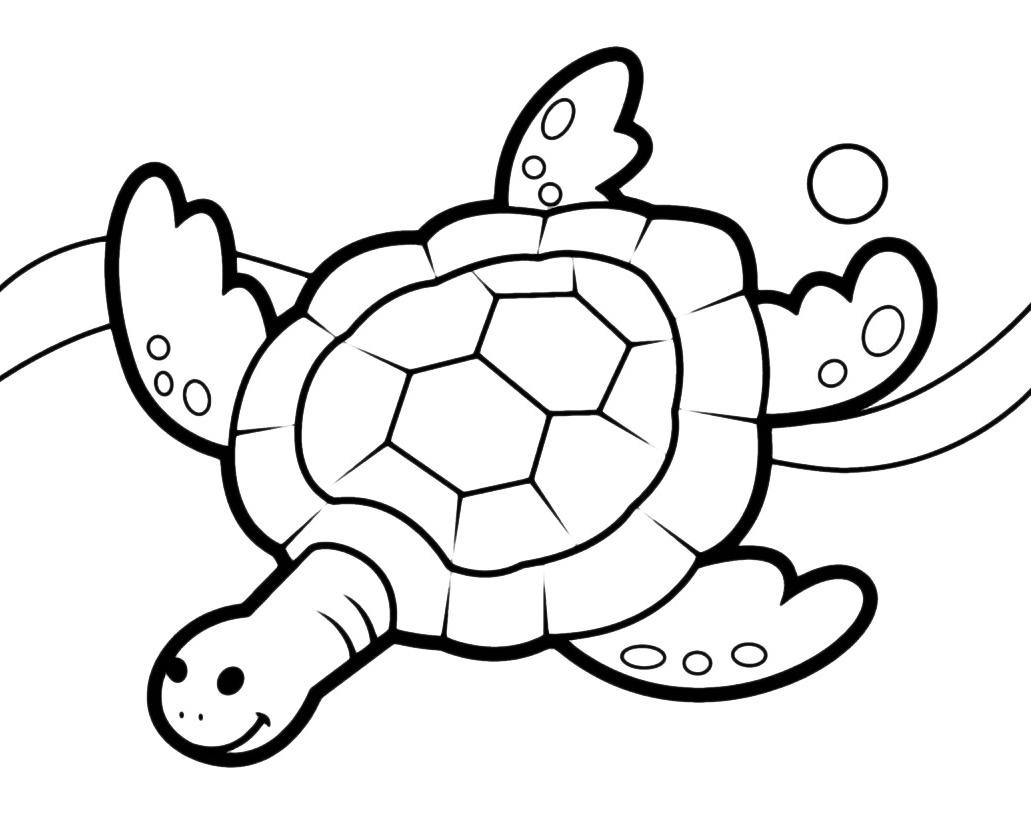 Animali tartaruga di mare for Immagini di mare da colorare