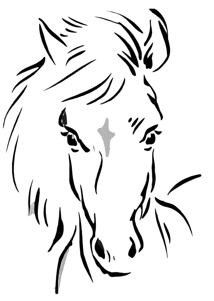 Раскраски детей лошади