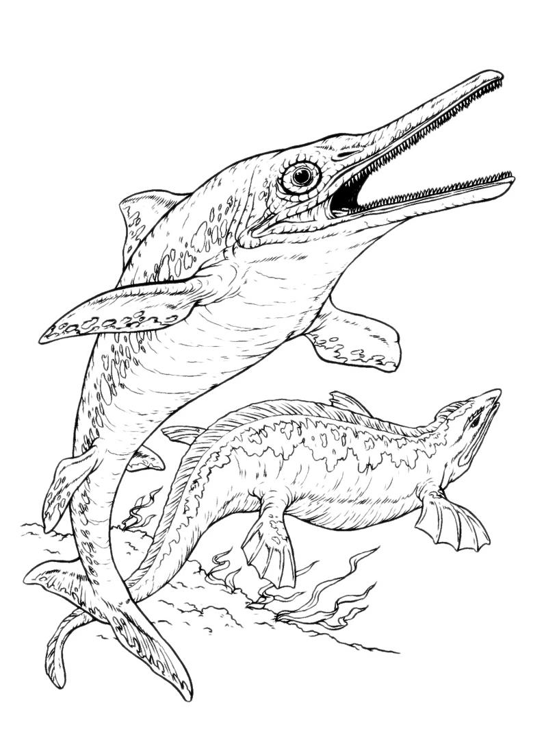 Dinosauri un ittiosauro nuota nel mare for Immagini di mare da colorare
