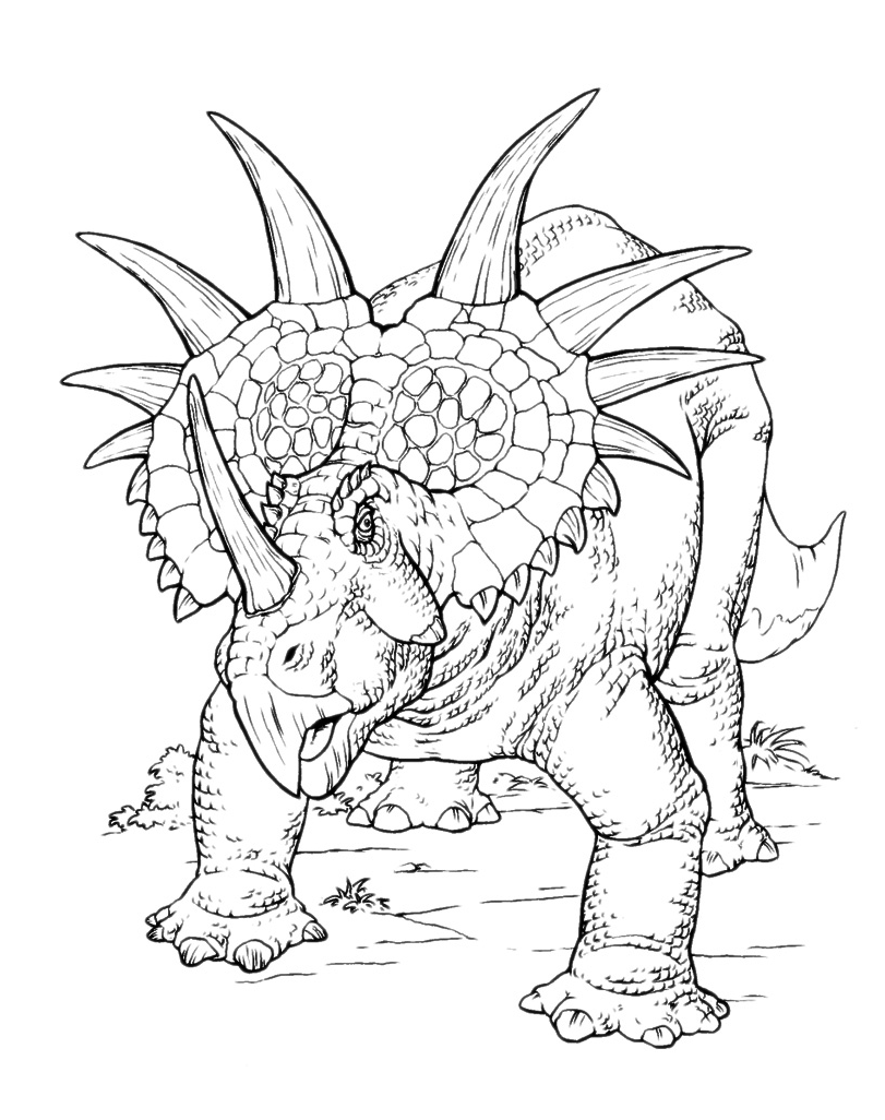 Disegni di dinosauri da colorare for Disegni da colorare dinosauri