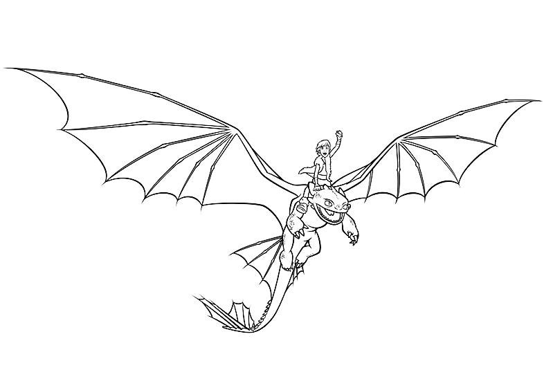 Dragon Trainer Hiccup In Groppa Alla Furia Buia