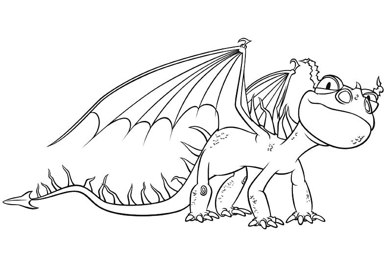 Disegni Di Dragon Trainer Da Colorare