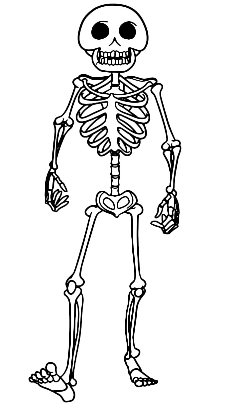 Hotel transylvania lo scheletro ospite dell 39 hotel - Scheletro foglio da colorare ...