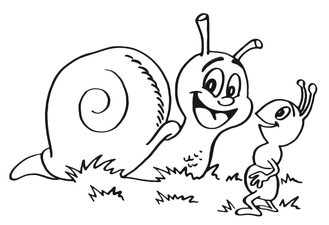 Disegni Da Colorare Animali Formica.Insetti Chiocciola E La Formica
