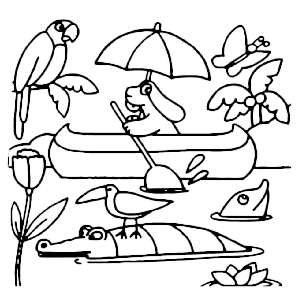 La pimpa la pimpa va in canoa nella giungla for Disegni della roma da colorare