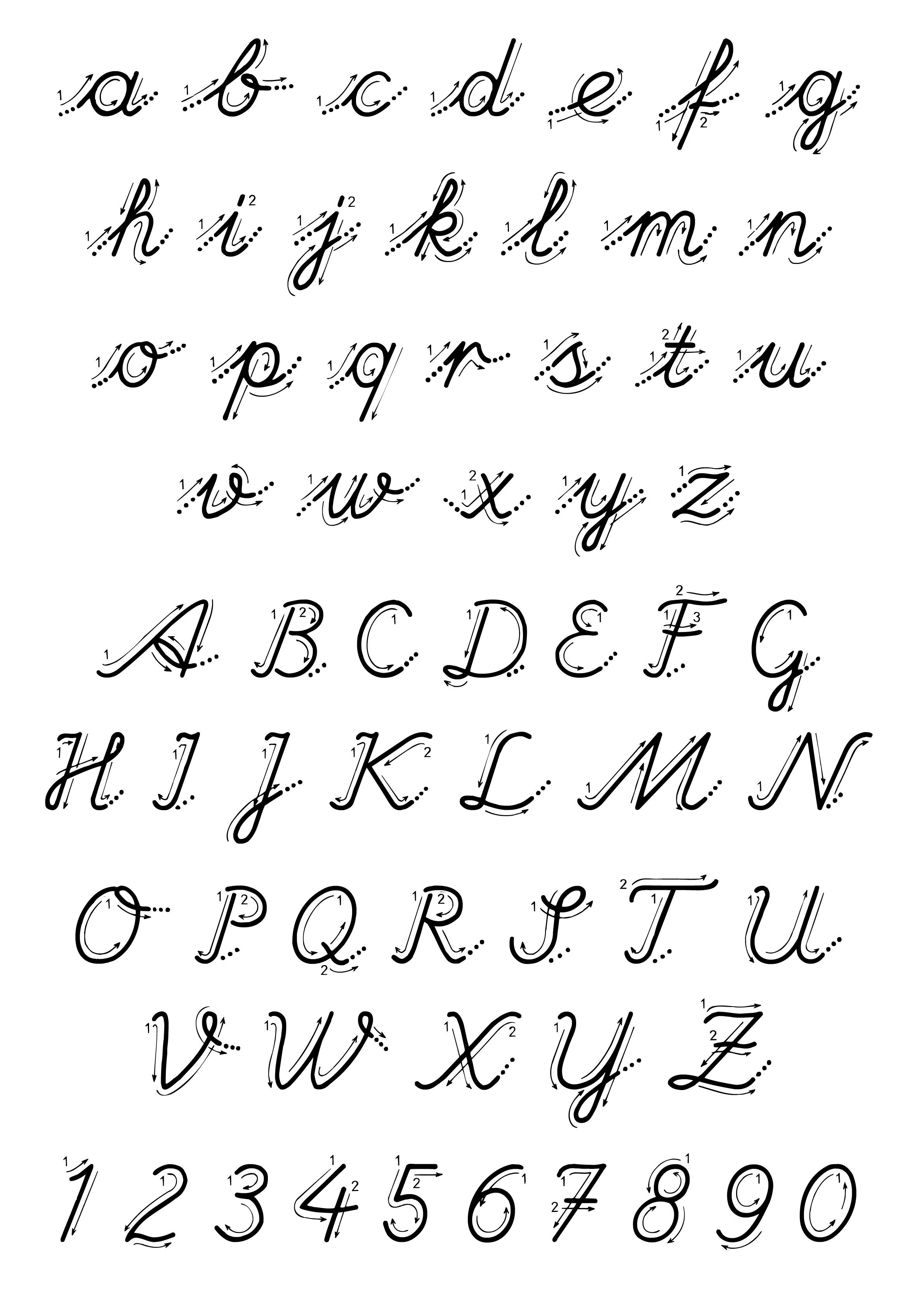 Lettere e numeri - Lettere e numeri con indicazioni movimento corsivo