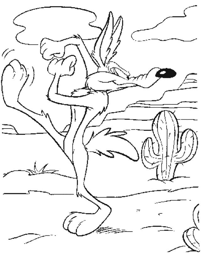 Looney Tunes Wile Coyote Pronto Partire