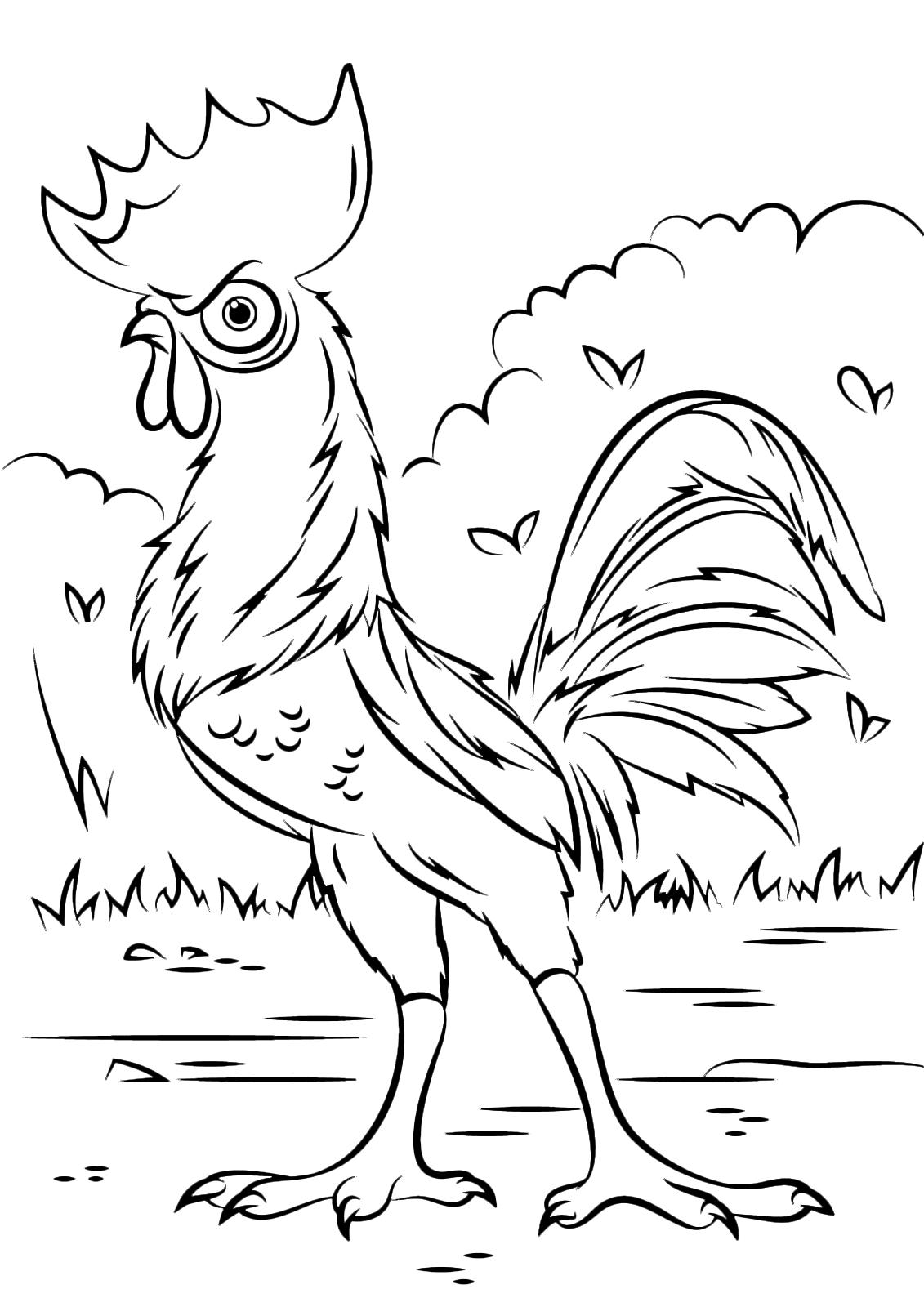 Oceania heihei il gallo clandestino compagno di viaggio di vaiana - Dessin vaiana a imprimer ...