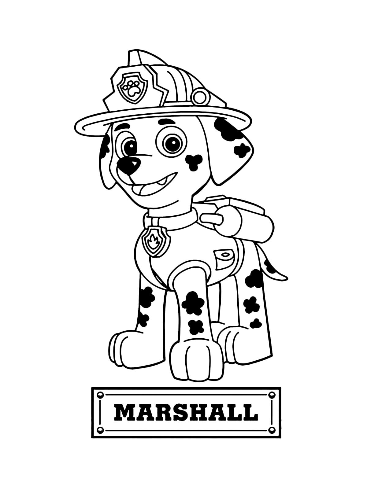 Paw patrol marshall il cane pompiere da salvataggio for Paw patrol disegni da colorare