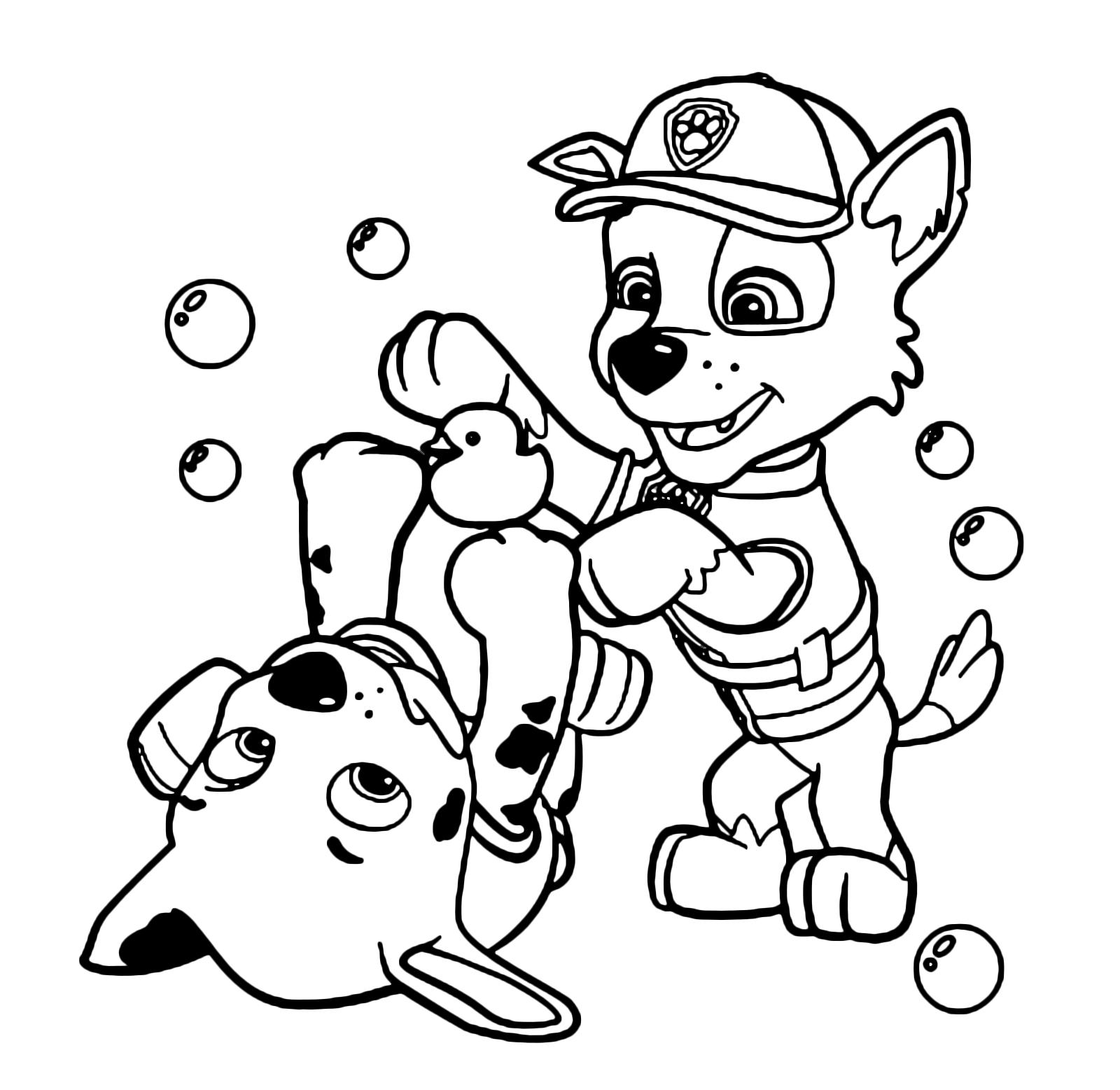 Paw patrol rocky e marshall giocano assieme for Disegni da colorare paw patrol