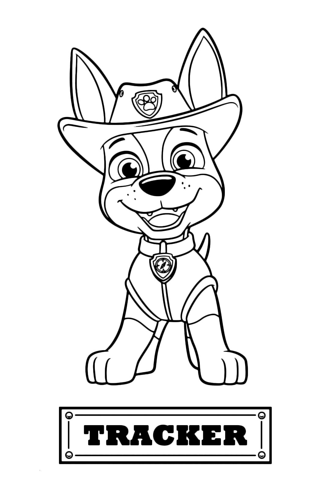 Paw patrol tracker il cucciolo di jack russel arrivato for Disegni di paw patrol