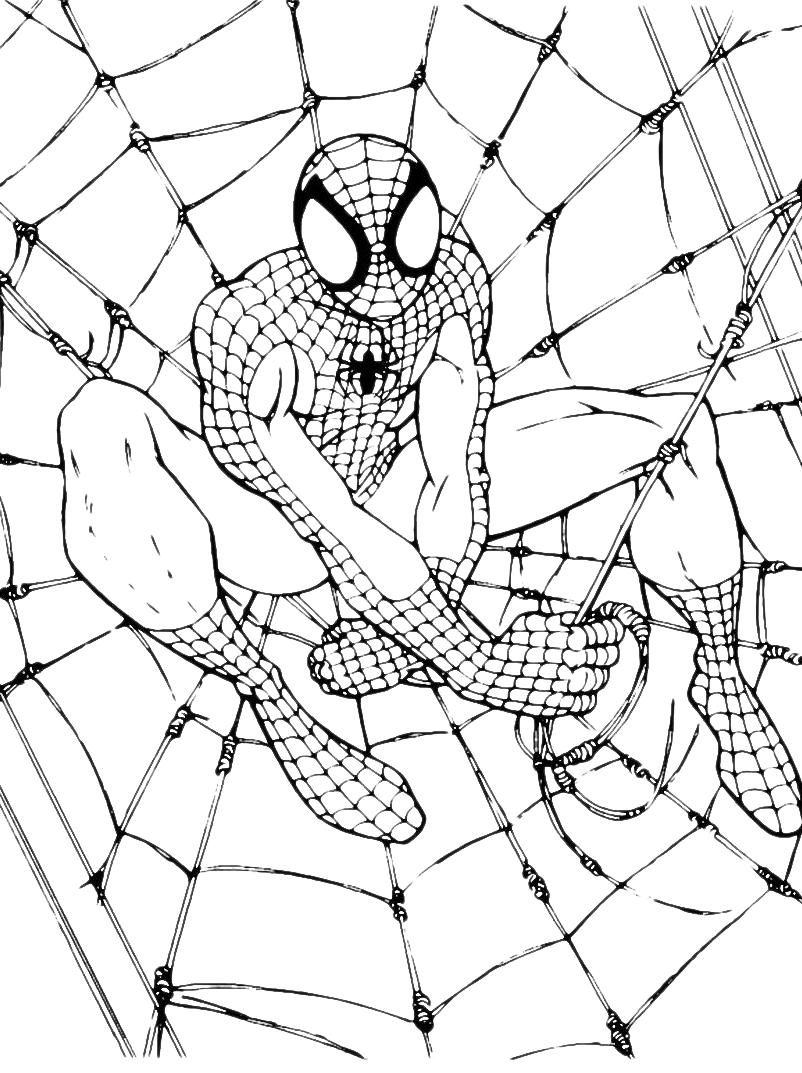 Disegni di spiderman da colorare Disegni spiderman da colorare gratis