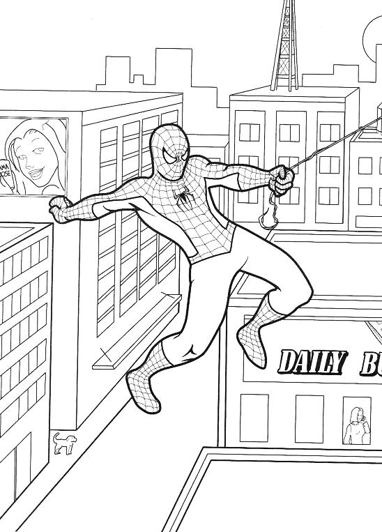 Spiderman Spiderman Vola Fra I Grattacieli Con Le Ragnatele