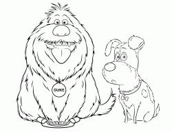 Disegni Di Pets Vita Da Animali Da Colorare