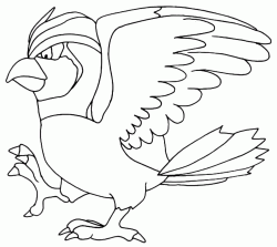 Pidgeotto mentre cammina